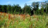 Trail Walk LONGPONT - en forêt de Retz_27_Longpont_Montgobert_Puiseux_AR - Photo 145