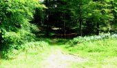 Trail Walk LONGPONT - en forêt de Retz_27_Longpont_Montgobert_Puiseux_AR - Photo 97
