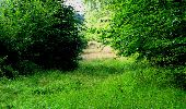Trail Walk LONGPONT - en forêt de Retz_27_Longpont_Montgobert_Puiseux_AR - Photo 170