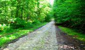 Trail Walk LONGPONT - en forêt de Retz_27_Longpont_Montgobert_Puiseux_AR - Photo 54