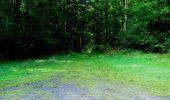 Randonnée Marche LONGPONT - en forêt de Retz_27_Longpont_Montgobert_Puiseux_AR - Photo 54