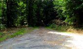 Trail Walk LONGPONT - en forêt de Retz_27_Longpont_Montgobert_Puiseux_AR - Photo 81