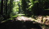 Randonnée Marche LONGPONT - en forêt de Retz_27_Longpont_Montgobert_Puiseux_AR - Photo 29