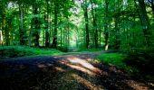 Trail Walk LONGPONT - en forêt de Retz_27_Longpont_Montgobert_Puiseux_AR - Photo 158