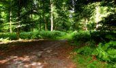 Trail Walk LONGPONT - en forêt de Retz_27_Longpont_Montgobert_Puiseux_AR - Photo 32