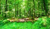 Randonnée Marche LONGPONT - en forêt de Retz_27_Longpont_Montgobert_Puiseux_AR - Photo 136