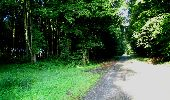 Randonnée Marche LONGPONT - en forêt de Retz_27_Longpont_Montgobert_Puiseux_AR - Photo 15