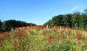 Trail Walk LONGPONT - en forêt de Retz_27_Longpont_Montgobert_Puiseux_AR - Photo 144