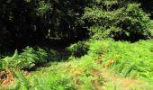 Randonnée Marche LONGPONT - en forêt de Retz_27_Longpont_Montgobert_Puiseux_AR - Photo 40