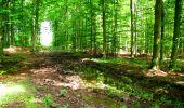 Trail Walk LONGPONT - en forêt de Retz_27_Longpont_Montgobert_Puiseux_AR - Photo 89