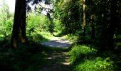 Randonnée Marche LONGPONT - en forêt de Retz_27_Longpont_Montgobert_Puiseux_AR - Photo 4