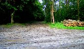 Trail Walk LONGPONT - en forêt de Retz_27_Longpont_Montgobert_Puiseux_AR - Photo 127