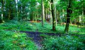 Trail Walk LONGPONT - en forêt de Retz_27_Longpont_Montgobert_Puiseux_AR - Photo 150