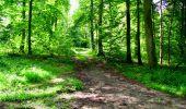 Trail Walk LONGPONT - en forêt de Retz_27_Longpont_Montgobert_Puiseux_AR - Photo 101