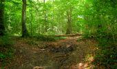 Randonnée Marche LONGPONT - en forêt de Retz_27_Longpont_Montgobert_Puiseux_AR - Photo 165