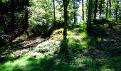 Trail Walk LONGPONT - en forêt de Retz_27_Longpont_Montgobert_Puiseux_AR - Photo 133