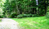 Randonnée Marche LONGPONT - en forêt de Retz_27_Longpont_Montgobert_Puiseux_AR - Photo 139
