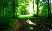 Randonnée Marche LONGPONT - en forêt de Retz_27_Longpont_Montgobert_Puiseux_AR - Photo 17