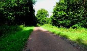 Trail Walk LONGPONT - en forêt de Retz_27_Longpont_Montgobert_Puiseux_AR - Photo 142
