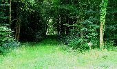 Trail Walk LONGPONT - en forêt de Retz_27_Longpont_Montgobert_Puiseux_AR - Photo 71
