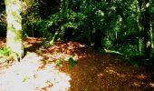 Randonnée Marche LONGPONT - en forêt de Retz_27_Longpont_Montgobert_Puiseux_AR - Photo 37