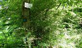 Trail Walk LONGPONT - en forêt de Retz_27_Longpont_Montgobert_Puiseux_AR - Photo 76