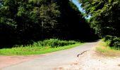 Randonnée Marche LONGPONT - en forêt de Retz_27_Longpont_Montgobert_Puiseux_AR - Photo 27