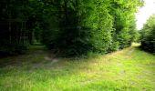 Randonnée Marche LONGPONT - en forêt de Retz_27_Longpont_Montgobert_Puiseux_AR - Photo 11