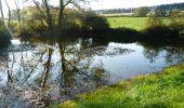 Randonnée Marche Wellin - Wellin - Wéry_Variante (WE 06) - Photo 1