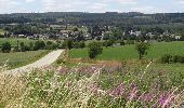 Randonnée Marche Sainte-Ode - Sprimont - Promenade d'Orti (A3) - Photo 2