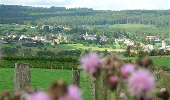 Randonnée Marche Sainte-Ode - Lavacherie - Promenade de la Fagne du Golet (L3) - Photo 1