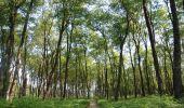 Randonnée Marche Saint-Hubert - Saint-Hubert - Bilaude (SH04) - Photo 1
