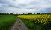 Trail Walk Tellin - Bure - Le chemin des Bruyères - Photo 1
