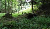 Randonnée Marche Tellin - Bure - Promenade entre Ardenne et Famenne - Photo 6