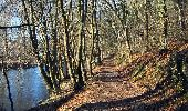 Trail Walk Tellin - Resteigne - Circuit de la Réserve Domaniale - Photo 8