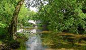 Trail Walk Tellin - Resteigne - Promenade du presbytère au château - Photo 3