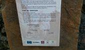 Trail Walk BAGNERES-DE-LUCHON - Tour de Venasque par col de la montagnette - Photo 11