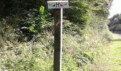 Randonnée Marche Sivry-Rance - ry de fromont 12 km - Photo 4