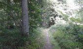 Randonnée Marche Sivry-Rance - ry de fromont 12 km - Photo 3