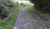Randonnée Marche Sivry-Rance - ry de fromont 12 km - Photo 2