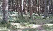 Randonnée Marche Sivry-Rance - ry de fromont 12 km - Photo 1