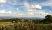 Randonnée Marche VERRIERES-EN-FOREZ - Madonne de Verrières - Photo 3