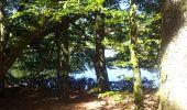 Randonnée Marche EYMOUTIERS - Eymoutier Lacelle - Photo 2