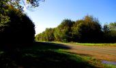 Trail Walk DAMPLEUX - en forêt de Retz_80_sur la Route Tortue et la Route Droite - Photo 40