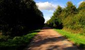 Trail Walk LONGPONT - en forêt de Retz_29_Longpont_la cave du Diable_A - Photo 199