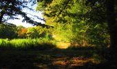 Trail Walk LONGPONT - en forêt de Retz_29_Longpont_la cave du Diable_A - Photo 163
