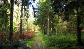 Trail Walk LONGPONT - en forêt de Retz_29_Longpont_la cave du Diable_A - Photo 216