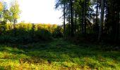 Trail Walk LONGPONT - en forêt de Retz_29_Longpont_la cave du Diable_A - Photo 55