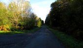 Trail Walk DAMPLEUX - en forêt de Retz_80_sur la Route Tortue et la Route Droite - Photo 277