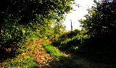 Trail Walk LONGPONT - en forêt de Retz_29_Longpont_la cave du Diable_A - Photo 179